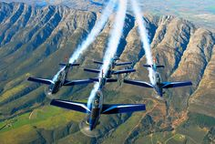 South African Silver Falcons