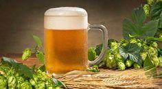 Beer Barley : images, photos et images vectorielles de stock Malta, Oregon, Cleaning, Mugs, Tableware, Beauty, Fotografia, Alcohol, Malt Beer