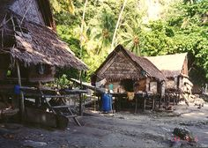 A village in Alcester, Trobriand Islands, Papua New Guinea Photo Beautiful Homes, Beautiful Places, Beyond The Horizon, Village Houses, Borneo, Papua New Guinea, Pacific Ocean, Traditional House, World Cultures
