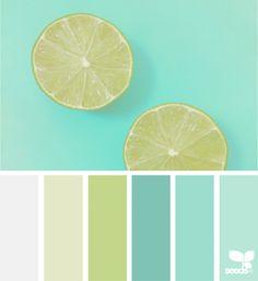 Citrus Hues | Design Seeds