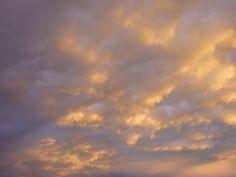 2014 may - golden evening