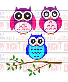 Set of 3 owl clipart owl clip art cute owls by DavesDigitalArt