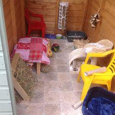 Great bunny ideas Indoor Rabbit House, House Rabbit, Pig Ideas, Guinea Pigs, Rabbits, Bunnies, Rabbit, Bunny, Bunny