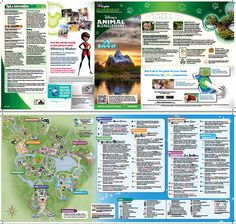 Animal Kingdom park map - print/view from home (PDF)