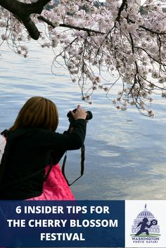 6 Insider Tips to Get the Most Out of the Cherry Blossom Festival in Washington DC!  Great tips for traveling around and photographing the Cherry Blossom trees of DC.