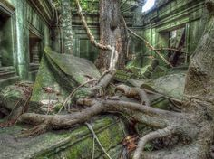 Beng Mealea Temple Destroyed by Jungle, Cambodia