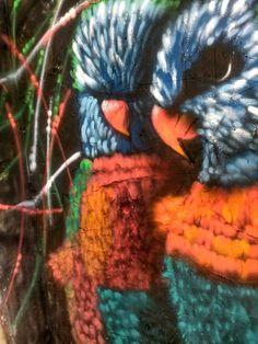 #spraypaint #bird #parrots #oiseaux #colours #sprayart