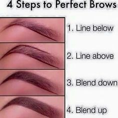 Brows!