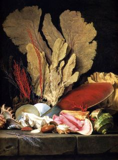 "transistoradio: "" Anne Vallayer-Coster Still-Life with Tuft of Marine Plants, Shells and Corals oil on canvas, 97 x 130 cm. Collection of Musée du Louvre, Paris, France. Via Wikimedia Commons. Memento Mori, Marine Plants, Art Gallery, Still Life Art, Arte Pop, Shell Art, Sea Creatures, Natural History, Sea Shells"
