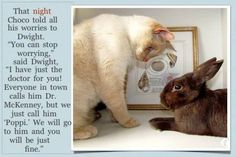 Choco Gets A Check Up for iPhone - a picture book (about 20 pages long) about a pet bunny visiting a friendly vet. Uses real-life photos as illustrations.