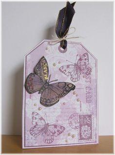 Butterflies   Flickr - Photo Sharing!