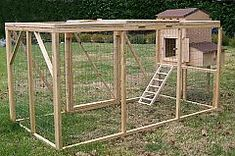 Creative Coops | Small Hen House Starter Kit