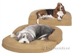 Как сшить лежанку для собак