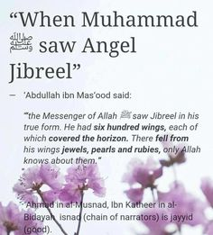 Subhan'Allah what amazing creations of Allāh Azzawajal there are that we can't even begin to imagine.  May we meet Angel Jibraeel Alayhi As-Salaam on the day of judgement with him being happy to see us.   REFLECT | ACT | SHARE