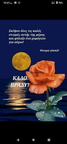 Good Night, Gifs, Life Quotes, Photos, Photography, Quotes About Life, Quote Life, Photograph, Have A Good Night