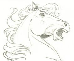 easy animal drawings horse head drawing simple step draw running cartoon amazing horses sketch pencil