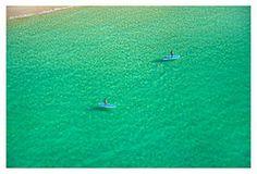 Emerald Sea Paddle Boarders,  Photog: Gray Malin.    One Kings Lane
