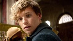 Eddie Redmayne stars as Newton Scamander in new Fantastic Beasts And Where To Find Them trailer Harry Potter Cursed Child, Harry Potter New, Fantastic Beasts Book, Fantastic Beasts And Where, Best Movie Trailers, New Trailers, Trailer 2, Official Trailer, Newton Scamander