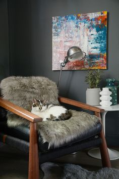 If you would like to participate in the Monday's pets on furniture series please send photos, your...