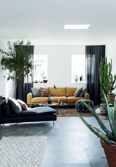 Danish home filled with plants