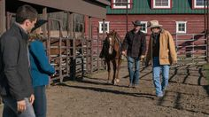 Ty, Amy, Jack and helpful new guy Heartland Tv Show, Heartland Seasons, Best Shows Ever, Amy, Tv Shows, Friends, Amigos, Boyfriends, Tv Series