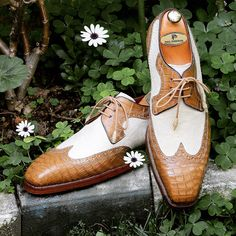 Derby Shoes, Goodyear Welt, Crocodile, Casual Shoes, Oxford Shoes, Lace Up, Beige, Dates, Leather