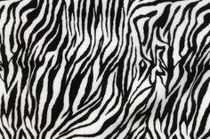 Ziggy Zebra Spandex
