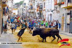 torodigital: Las fiestas de la calle de San Roque en La Vilave...