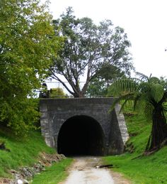 Old Railway Tunnel Two Ponga Park Okaihau New Zealand New Zealand, Park, Home Decor, Decoration Home, Room Decor, Parks, Interior Decorating