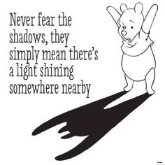 Life Quote  Never fear the shadows they simply mean theres a light shining