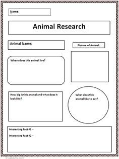 How does my argumentative essay sound for animal research, not done yet tho?