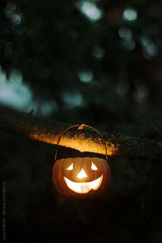 Pumpkin candle hanging on the tree by jovanarikalo | Stocksy United
