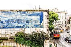 ardim Júlio de Castilho [Miradouro de Sta Luzia] - Lisboa (Portugal).  Um dos mais belos miradouros da cidade, com uma vista soberba para Alfama e o rio Tejo. Nos detalhados azulejos deste miradouro podemos também ver representações da Praça do Comércio antes do terramoto de 1755 e também do ataque cristão ao Castelo de S. Jorge.