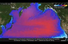 Fukushima Radiation in U.S. West Coast Tuna | NOAA Fisheries