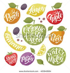 Vector illustration of hand drawn fruits and vegetables. Lettering  elements, calligraphic names of products. Eating set for farm, market, cafe design, menu and recipes. Healthy organic fresh food