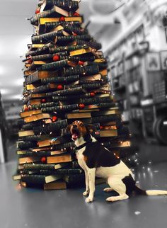 Jack soooo excited to see the Kennys Bookshop BookTree :) Book Tree, Charity, Times Square, Adoption, Dogs, Christmas, Travel, Foster Care Adoption, Xmas