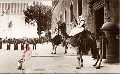 ..questi che vedete a piazza venezia non sono dell'isis ..ma gli Arditi Neri o Dubat Somali...
