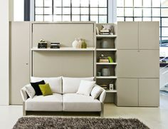 murphy bed wall unit with a white couch and bookshelf
