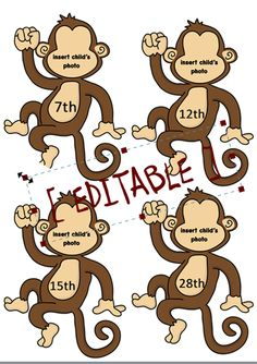 Teacher's Pet Displays » Editable Cheeky Monkey Birthday Display » FREE downloadable EYFS, KS1, KS2 classroom display and teaching aid resources » A Sparklebox alternative
