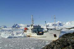 В Арктике открыли новые острова
