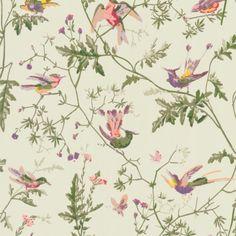 Cole & Son HUMMINGBIRDS GREEN MULTI-COLOUR Wallpaper