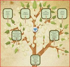 Preserving Heritage: Healing the family history      #genealogy   #health