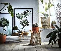 KANELSTÅNG plantenstandaard   IKEA IKEAnl IKEAnederland inspiratie wooninspiratie interieur wooninterieur planten rotan
