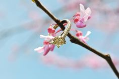 Spring Engagements