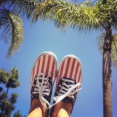 Red, White, and Blue Vans via Arielle Murphy.