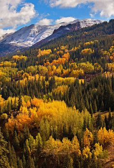 Red Mountain Splendor #454 photo