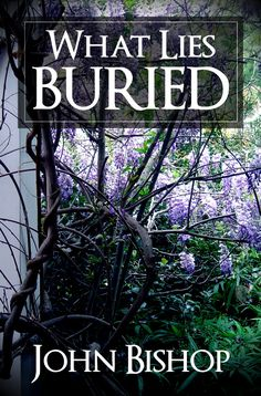 """What Lies Buried""  ***  John Bishop  (2012)"