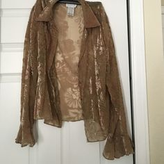 Very pretty sheer blouse Pre owned great condition Vision apparel  Tops Blouses