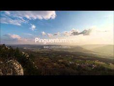 Pinguentumlapse - Valley View :: Buzet, Istria, Croatia :: hren | pletho...