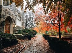 From our friends at Fordham  @fordhamuniversity - It's a rainy winter morning here in #NYC which somehow manages to make campus even more beautiful.  Photo by @sarahmurrayny (FCRH '17)  #Fordham #Fordham175 #rosehill #bronx #rainydays #goviewyou